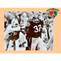 Immaculate Reception Mini Poster