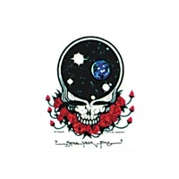 GRATEFUL DEAD SPACE YOUR FACE STICKER