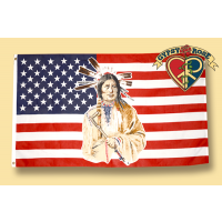 US NATIVE AMERICAN FLAG