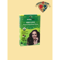 Organic All Natural Rajasthani India Henna Kit