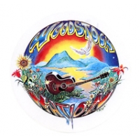 WOODSTOCK NATION GUITAR STICKER