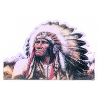 Born Free Native American Chief Sticker