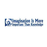 IMAGINATION IS MORE IMPORTANT THAN KNOWLEDGE - EINSTEIN BUMPER STICKER