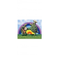 GRATEFUL DEAD DANCIN TERRAPINS STICKER