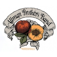 ALLMAN BROS BAND PEACH BANNER