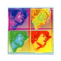 JIMI HENDRIX 4 WAY ELECTRIC LADYLAND PSYCHEDELIC STICKER