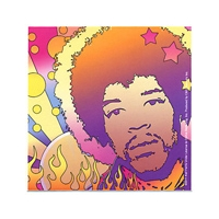 JIMI HENDRIX POP ART 1 STICKER