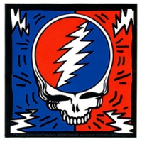 Grateful Dead Steal Your Face Bolts Sticker